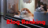 人気blogランキングへ