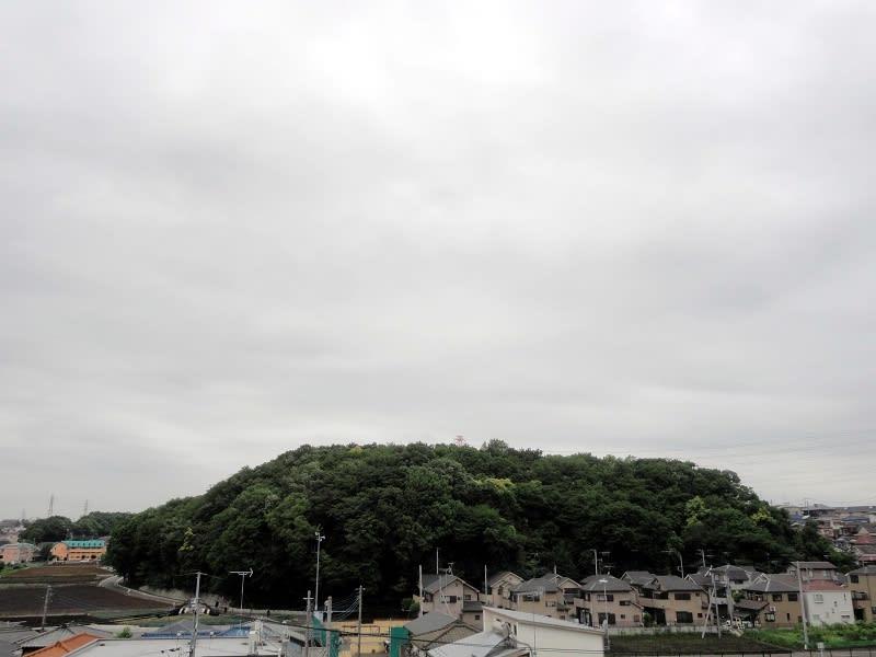 05月23日 根岸台