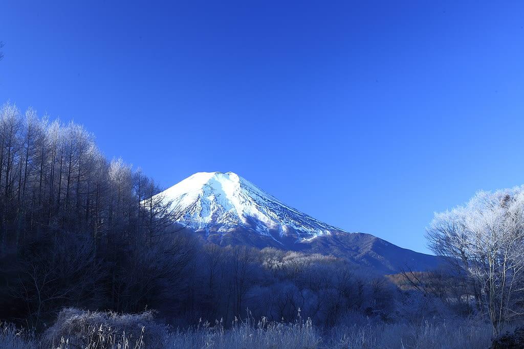 霧氷と富士山の写真