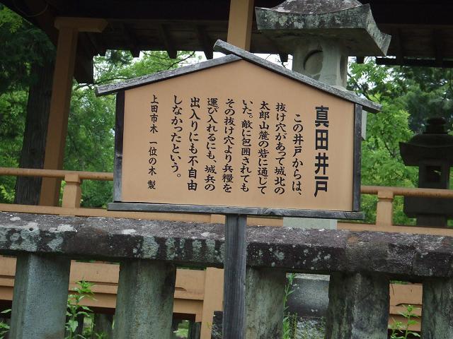 2011_0526045