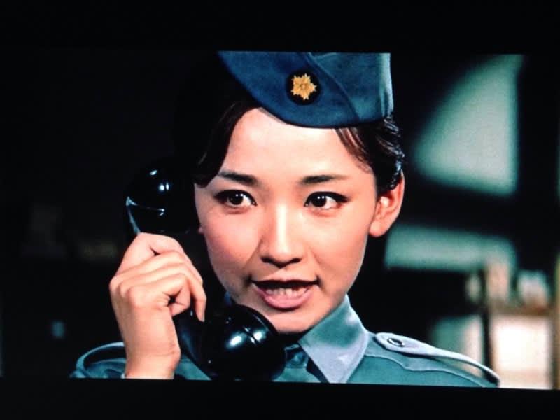 芦川いづみの画像 p1_33