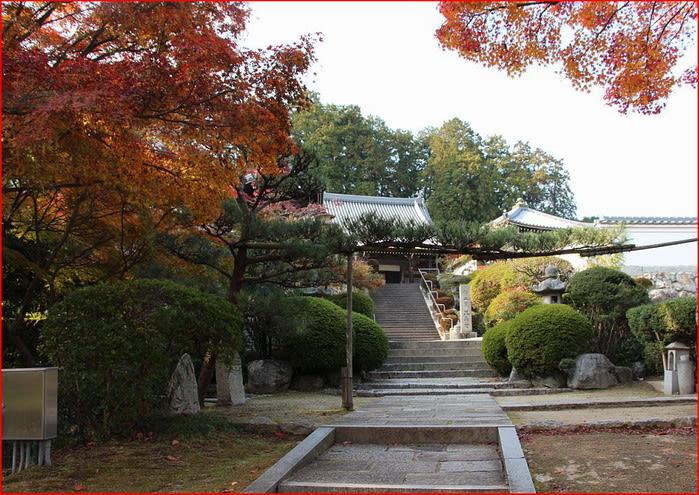奈良県御所市 九品寺の紅葉 - 四季のつれづれ