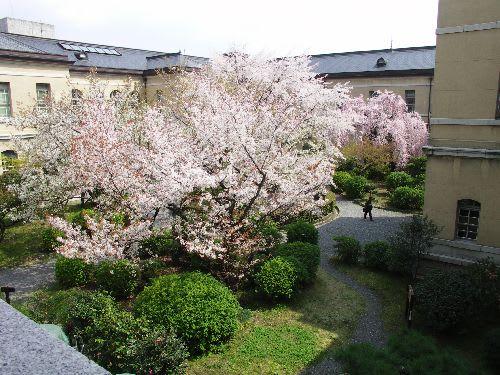 旧府庁の中庭