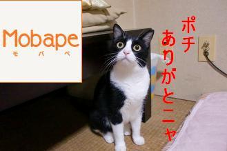 モバペ|ペット人気ブログランキング