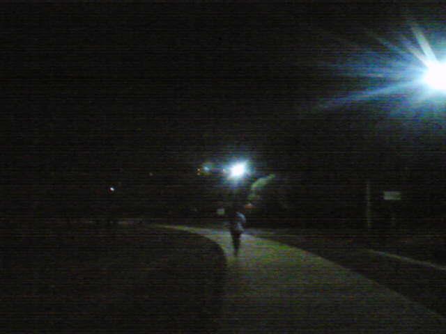 夜の春日公園