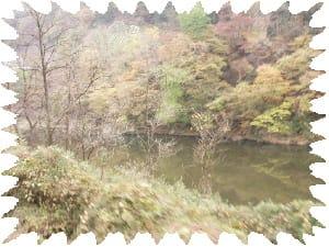渓谷風景色々