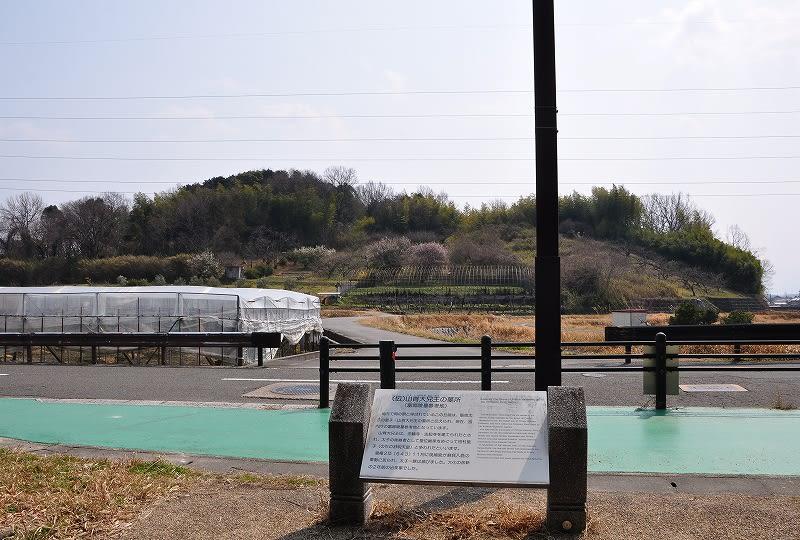 富郷岡の原