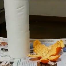 電子レンジのニオイと汚れを落とす果物とは!?