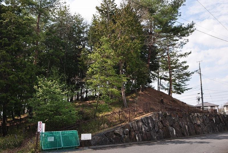 シイの木公園