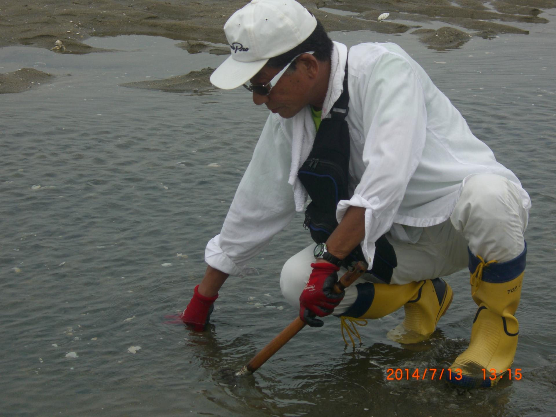 潮干狩り・三重県の穴場スポットは?子連れにおす …