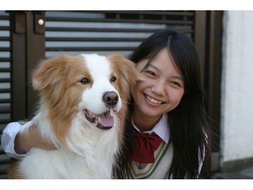 犬と宮崎あおい