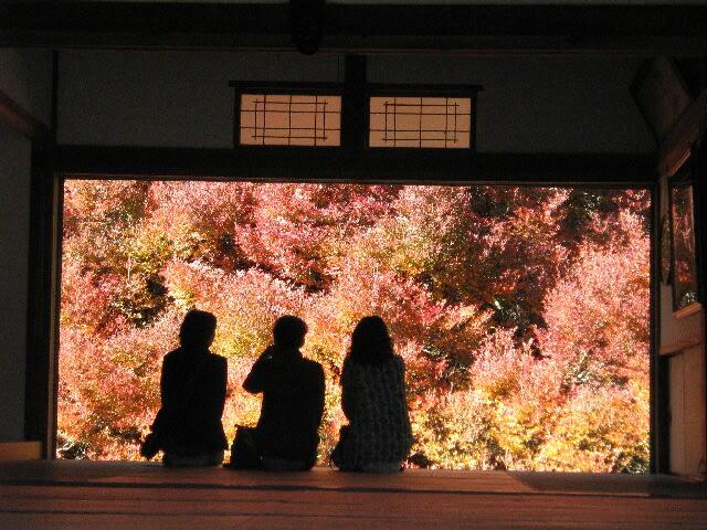 安国禅寺のドウダンツツジの紅葉