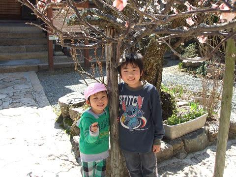 林渓寺の梅
