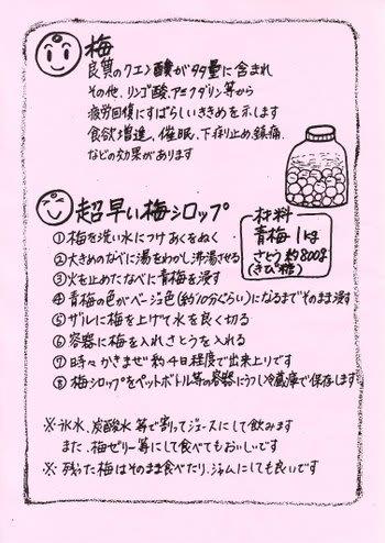 Ume_syrup_2