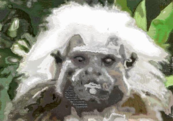 余裕のスーパーサイヤ猿