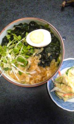 今日のお昼[若芽うどん&ポテトサラダ]