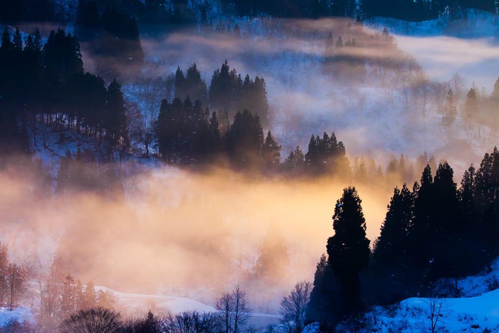 蒲生棚田 朝霧の写真