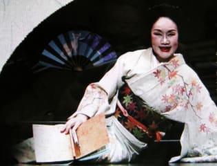 白石加代子の「源氏物語」~空蝉、朝顔、玉蔓 - 熟年の文化徒然雑記帳