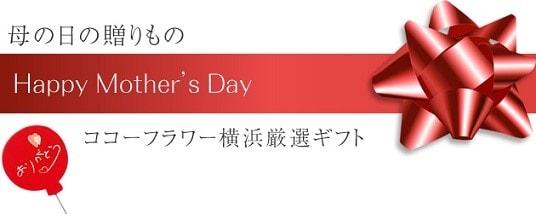 母の日 アートフラワー(造花)アレンジ ギフト プレゼント 通販