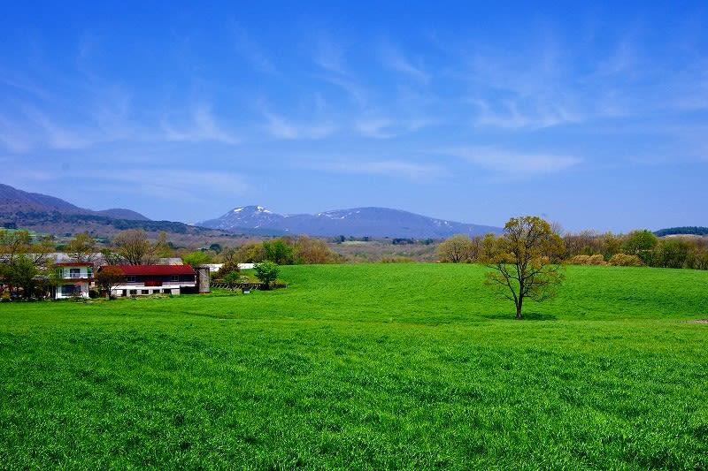 那須町 大島地区からの風景 那須連山とサクラ 26.5.8 - 栃木の木々