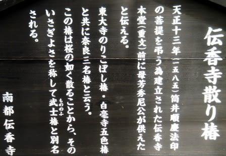 伝香寺 2011.07.09 Archives - 週一 ...