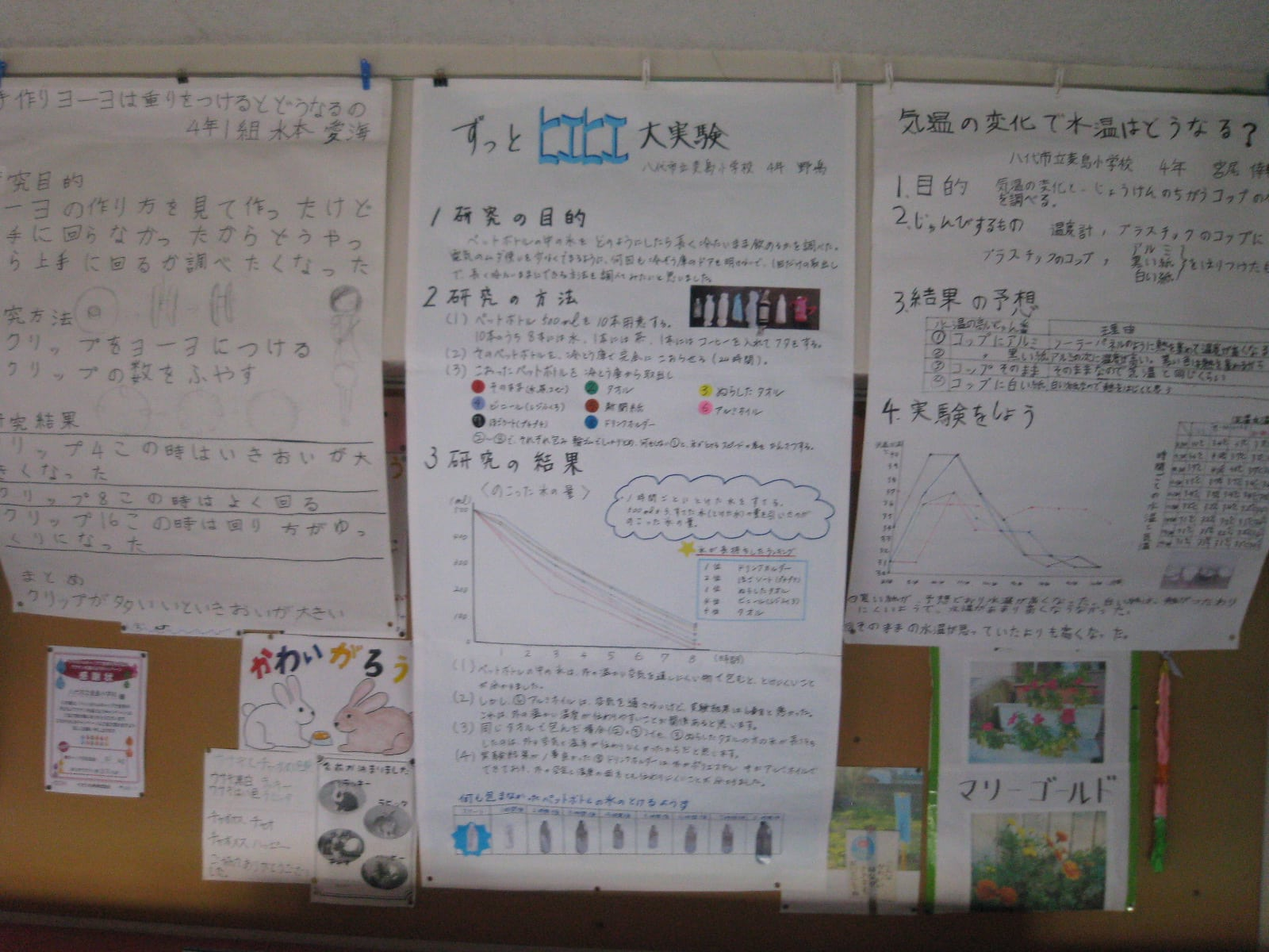 自由研究 - 八代市立麦島小学校公式ブログ
