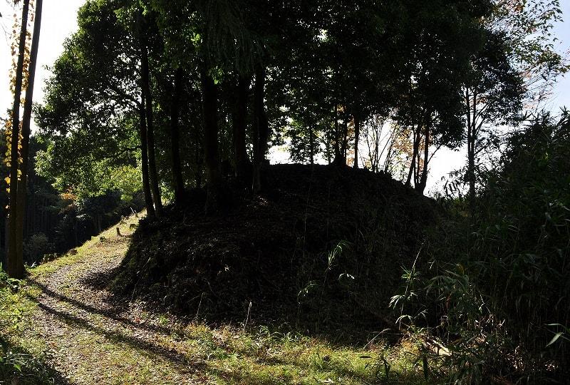 楯岡山1号墳の墳丘