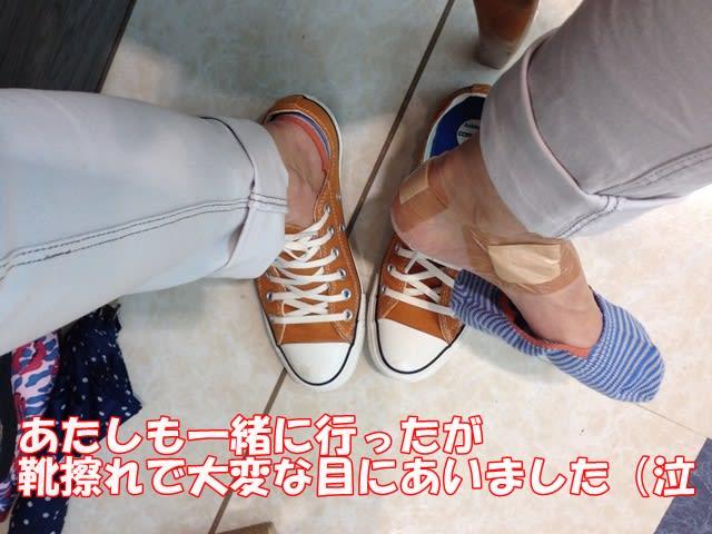 Img_6993