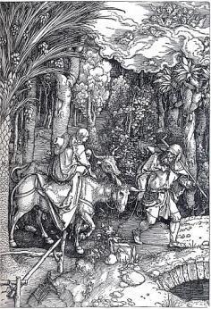 アルブレヒト・デューラーの画像 p1_37