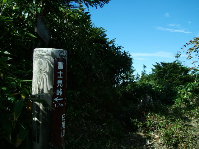 白尾山(2003m)のピークです