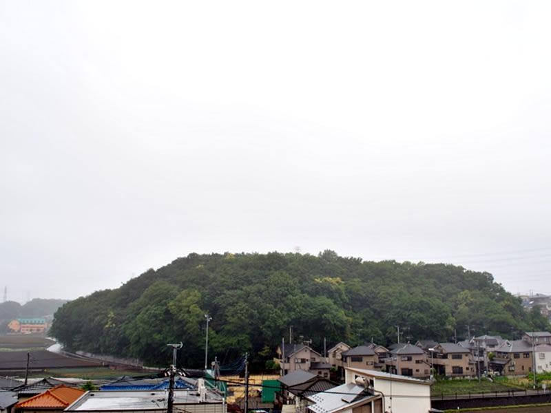 05月28日 雨の根岸台