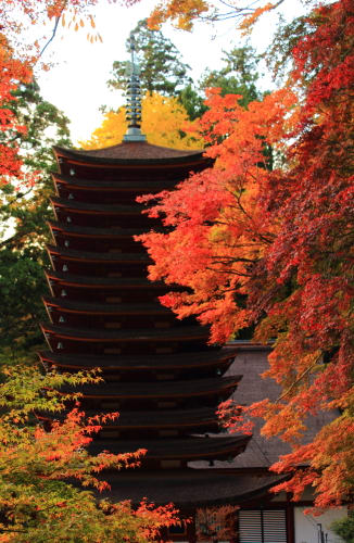 〔奈良・紅葉2013見頃〕多武峰・談山神社は11月14日現在まだ五分程度 - しっとう?岩田亜矢那