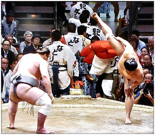 千代の富士貢の画像 p1_36