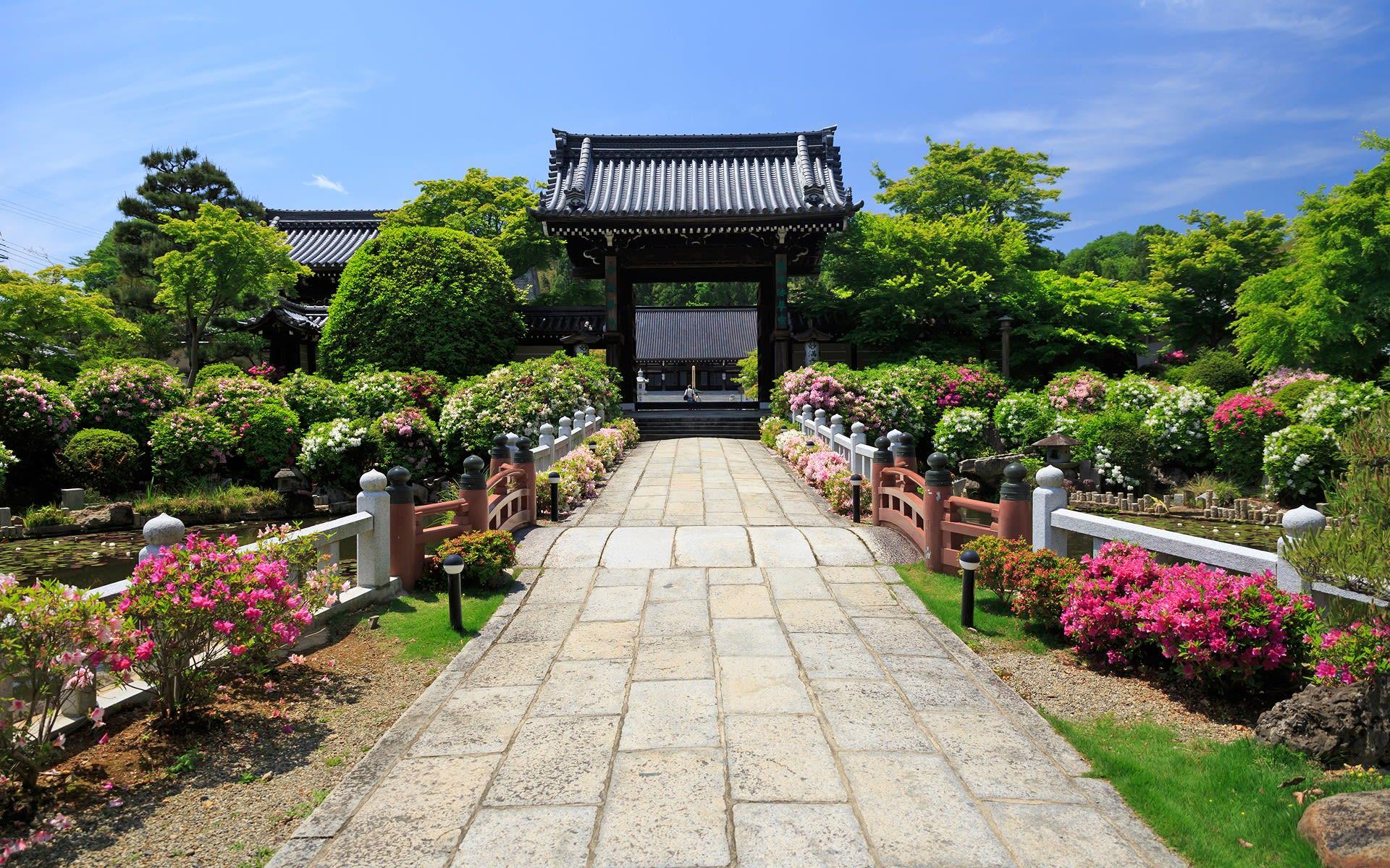 2013年新緑の京都・妙満寺の壁紙...