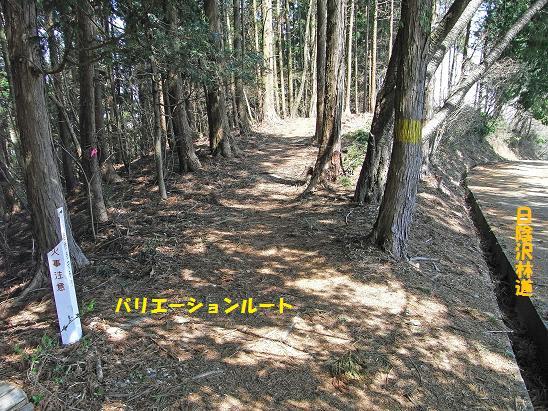 城山~日影沢(バリエーションルート) - 山に魅せられて