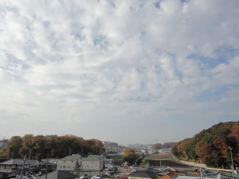 11月26日 朝の雲