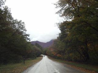 朝の観光道路
