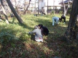笹刈3.jpg