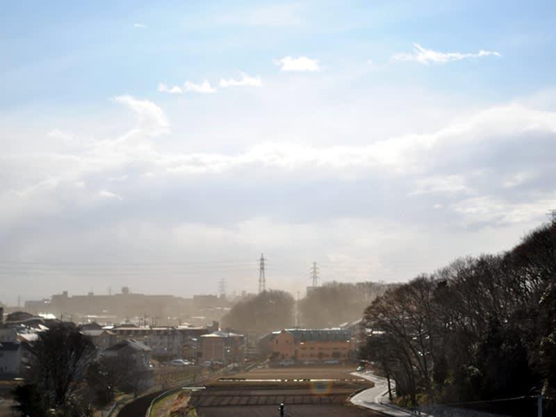 03月16日 風が強い