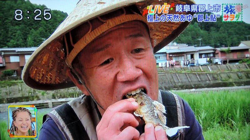 Bite_sweet_fish