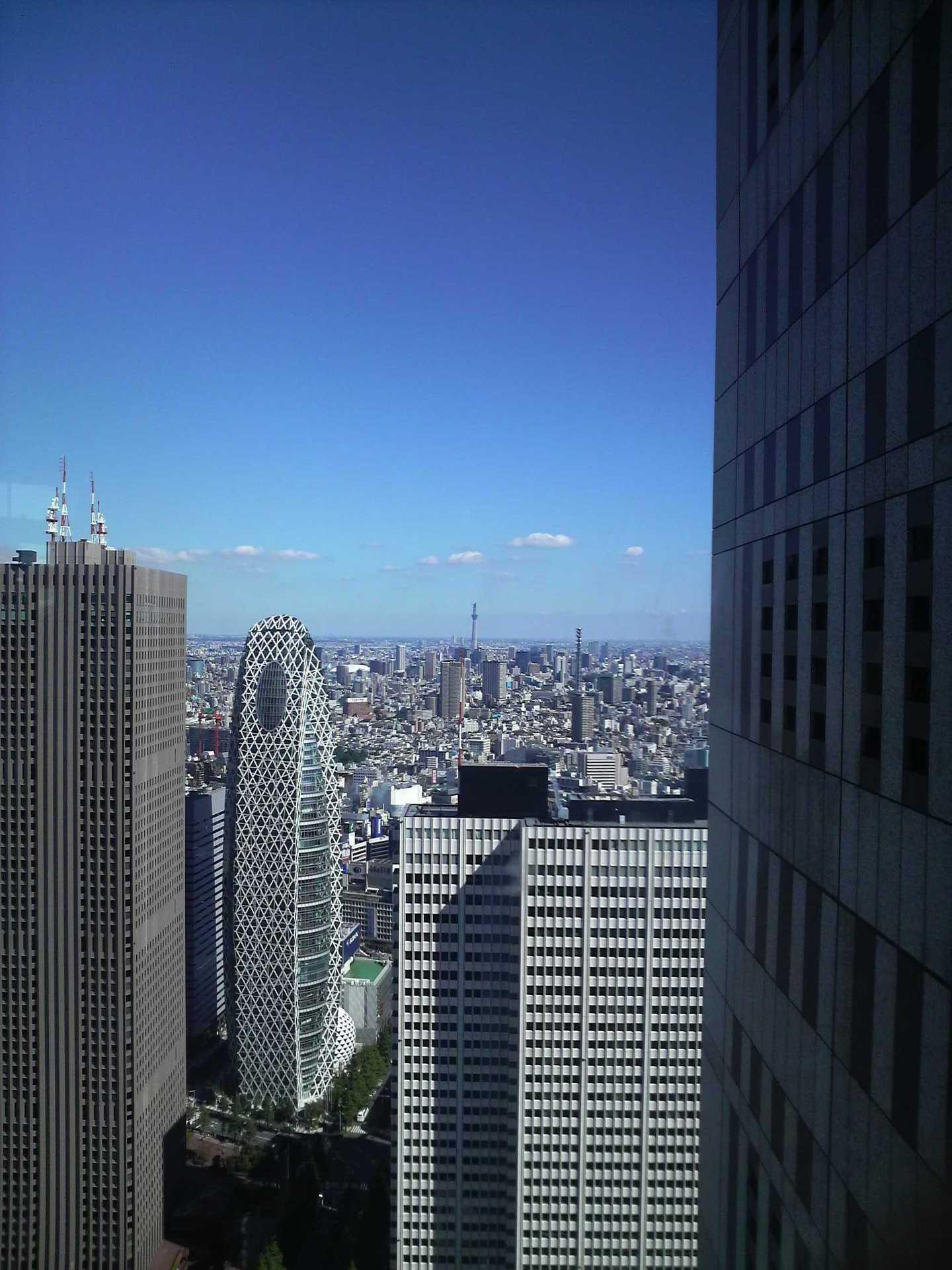 東京都庁から東京スカイツリー(建設中)を見る
