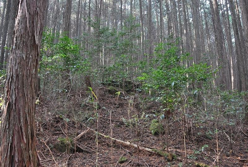 檜牧石風呂古墳の墳丘