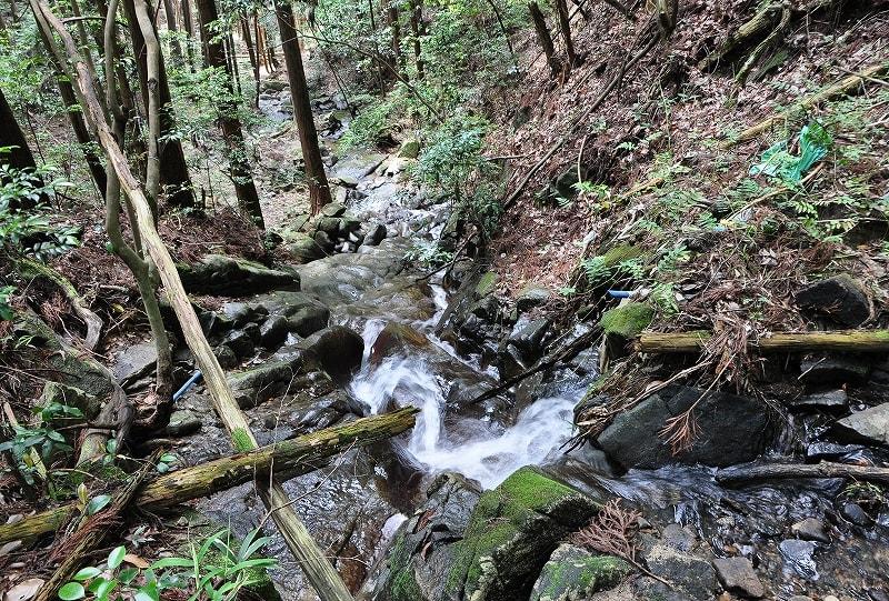 上から細滝川