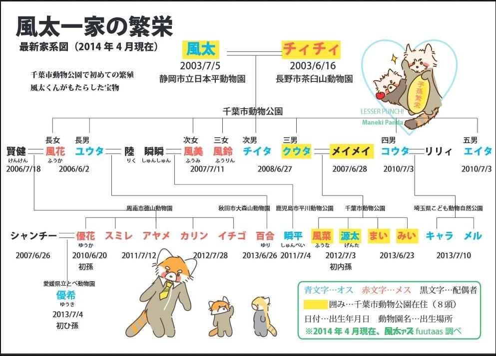 これが風太一家の家系図です