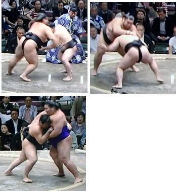 140921_sumosatoyama