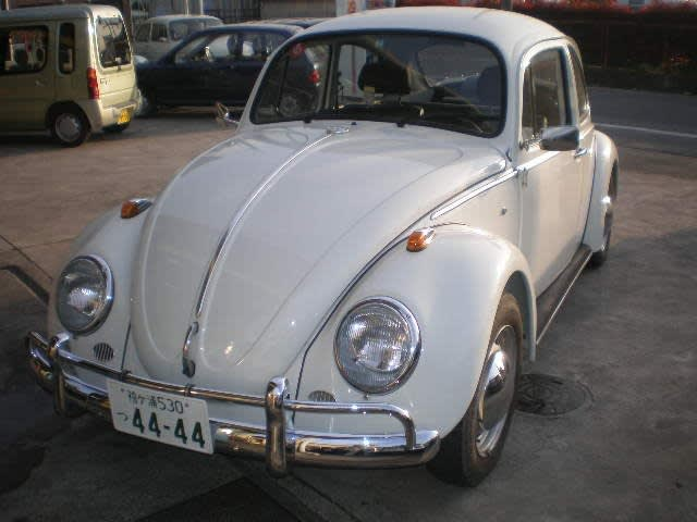 P4150066