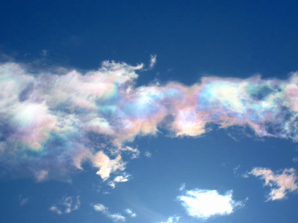彩雲 (航空機)の画像 p1_35