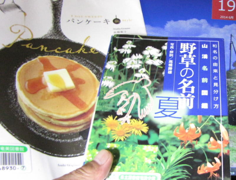 140619_book_pan_cake_herbs