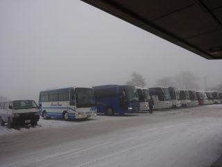 数えてみたら、23台バスがいました。