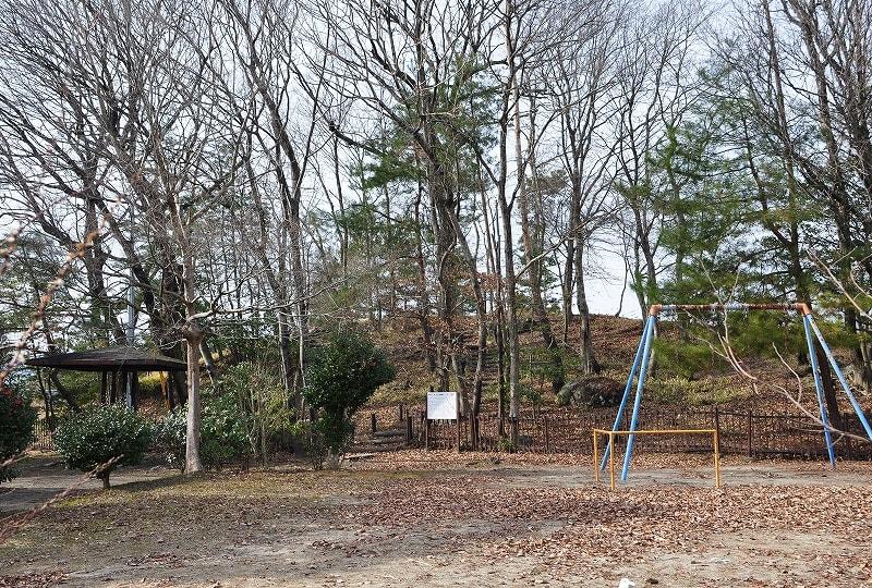 ニレの木公園